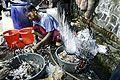 Indonesien: Kind starb an Vogelgrippe