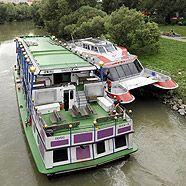 Twin City Liner rammte das Ufer in Wien