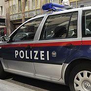 Sechs Diebe und Einbrecher in Wien auf frischer Tat ertappt