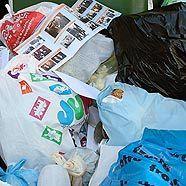 Müllsünder im ersten Halbjahr verstärkt zur Kasse gebeten