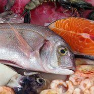 """Meeresfrüchte am Donaukanal: Badeschiff eröffnet """"Fischmarkt"""""""