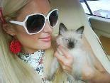 Paris Hilton – tierisches News-Update: Ihre neue Muschi heißt Princess Annabell!