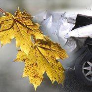 Herbstblätter: Schön auf dem Baum, gefährlich auf der Straße