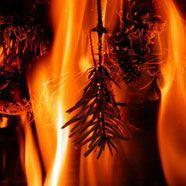 Christbaumkerzen: Brandgefährlich für Kleinkinder