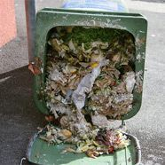 USA: Fast 40 Prozent des Essens landet im Müll