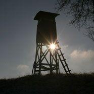 Österreich darf von Schweizern höhere Jagdabgabe verlangen