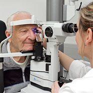 Augenkrankheit Achromatopsie erstmals im Tierversuch geheilt