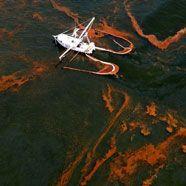 Ölpest: Experte nennt Folgen für Küste Louisianas gering