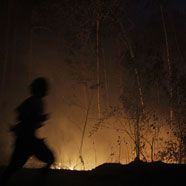 Russische Waldbrände machen Finnen das Atmen schwer