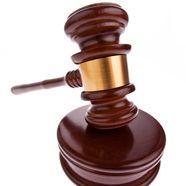 Prozess um Wiener Väterrechtler fortgesetzt