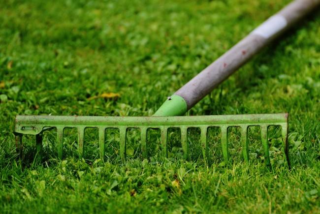 Frühjahrskur für den Boden