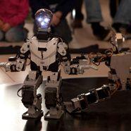 RobotChallenge: Österreich holt mit fünf Medaillen 3. Platz