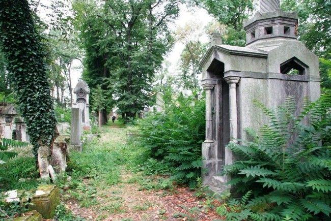 Erhaltenswertes Kulturgut: Der Jüdische Friedhof Währing