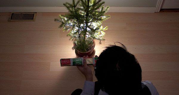Weihnachten allein zu verbringen, kann ganz schön trist sein. Doch es gibt Abhilfe!