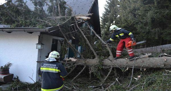 Durch starke Sturmböen stürzte in Mönichkirchen ein Baum auf ein Haus
