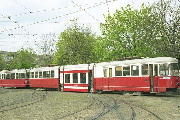 dates frauen Neustadt an der Weinstraße