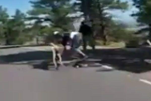 Skater crasht mit aufgeschrecktem Reh.