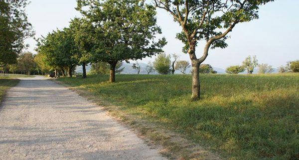 Steinhofgründe: Ruheoase und Spielspaß