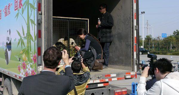 Fu Hu wurde bei seiner Ankunft in China von den Medien begrüßt.
