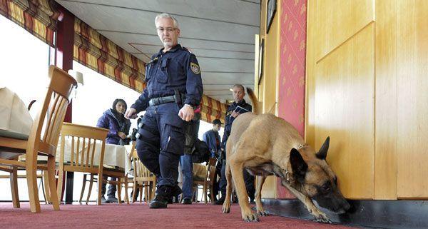 Am Mittwoch trainierten die Drogenhunde der Wiener Polizei in einer Höhe von 170 Metern.