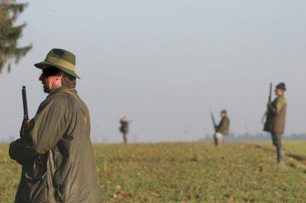 Tödlicher Jagdunfall in NÖ - Jäger (55) war leicht alkoholisiert