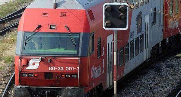 Ein Wiener wurde in der Steiermark von einem Zug erfasst.