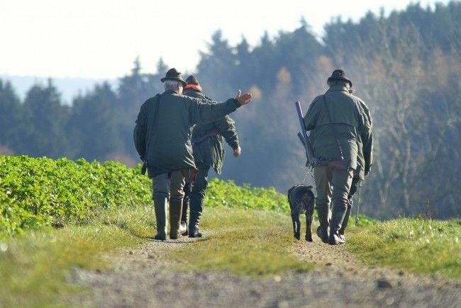 Bei einer Jagd im Weinviertel geschah ein tödlicher Unfall