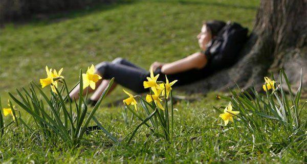 Was hilft wirklich gegen die alljährliche Frühjahrsmüdigkeit?