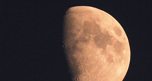 """Das NHM setzt beim """"Mondkauf"""" auf Crowdfunding."""