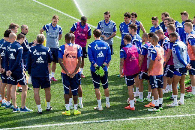 Am 24. Jänner findet ein Testspiel zwischen Rapid Wien und Schalke 04 statt.