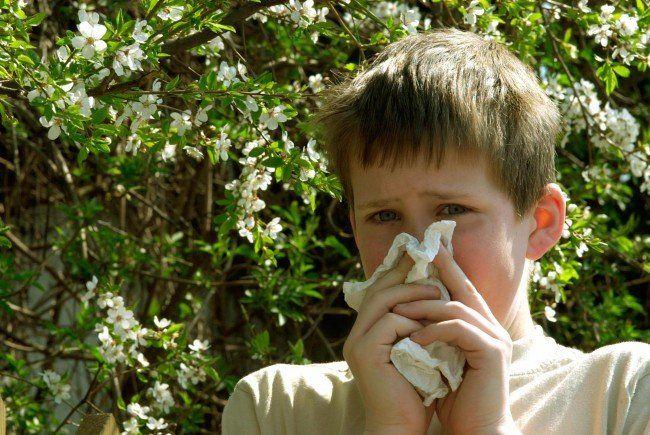 Tipps gegen Allergien - vor allem im Frühjahr.