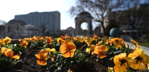 Der Frühling erwacht in Wien