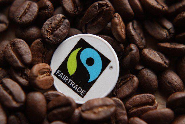 Die Wandlung zum Thema Umwelt und Fairtrade.