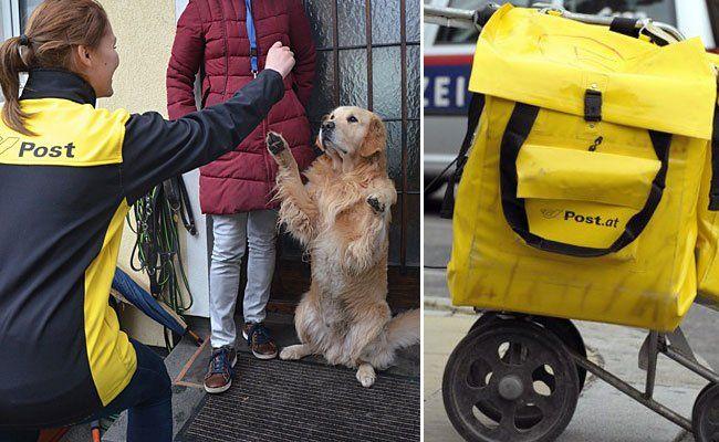 Für ein besseres Verhältnis zwischen Postler und Hund soll eine neue Fressnapf-Aktion sorgen