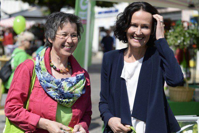 Die Grünen sehen ihre Chance bei der Landtagswahl im Burgenland.
