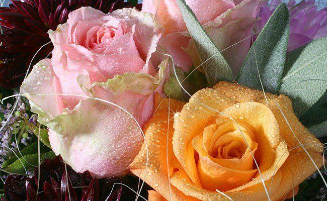 Mit diesen Farben von Rose und Co. liegen Sie heuer am Muttertag richtig