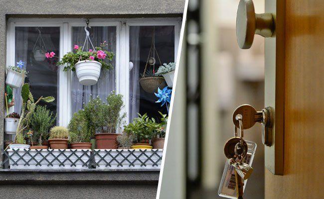 Stadt Wien rüstet sich gegen Uber, Airbnb und Co.