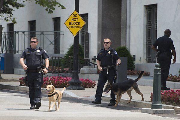 Spürhunde suchten nach Sprengstoff