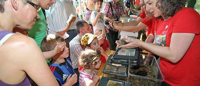 5. und 6. Juni: Die Tier- und Pflanzenwelt entdecken und gemeinsam schnorcheln!
