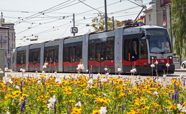 Auf der Linie 49 wird ein Ersatzbus eingesetzt.