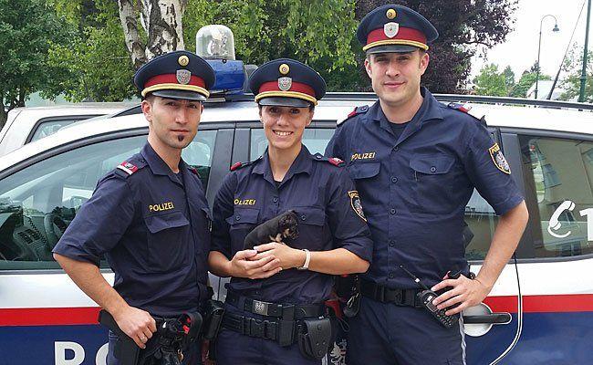 Die Polizisten nahmen dem 31-Jährigen diesen winzigen Hund ab