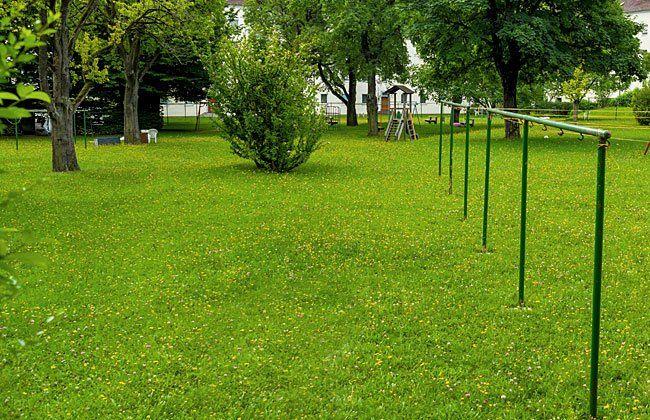 Die Anrainer wehren sich gegen die Verbauung ihrer Grünoase, dem Willi-Frank-Park