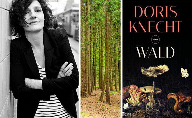 """Von einer, die in den Wald zog, um zu überleben: Doris Knechts """"Wald"""""""