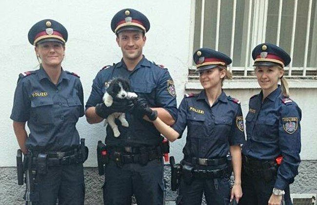 Die Polizisten mit dem geretteten Welpen