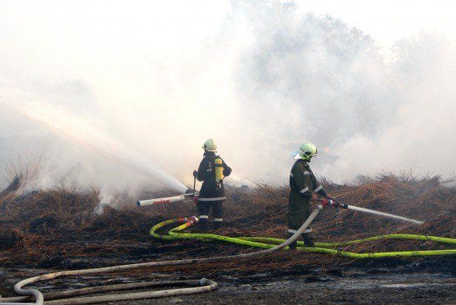Zwei Feldbrände aufgrund hoher Temperaturen im Burgenland