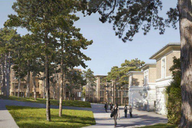 Wiener Steinhof-Gründe: Stadt hält sich an Experten-Empfehlung