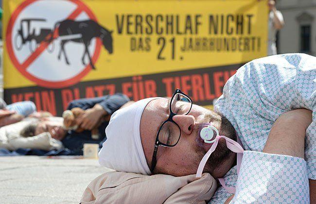 Aktivisten des Vereins gegen Tierfabriken (VGT) bei der Sleep-In-Aktion