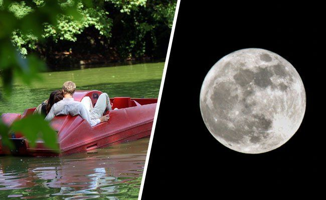 Am 31. Juli herrscht wieder romantische Stimmung auf der Alten Donau.