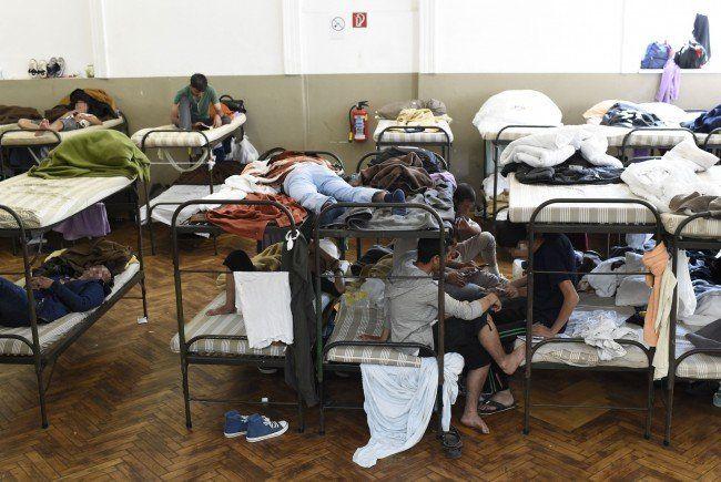 Amnesty International möchte die Asyl-Lage prüfen.