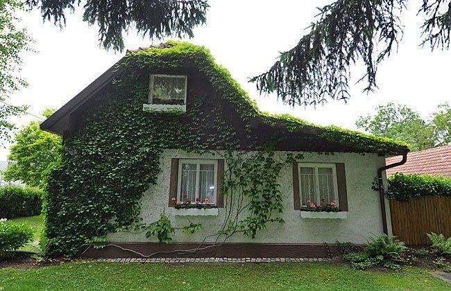 In diesem Haus in Donaustadt geschah die Bluttat